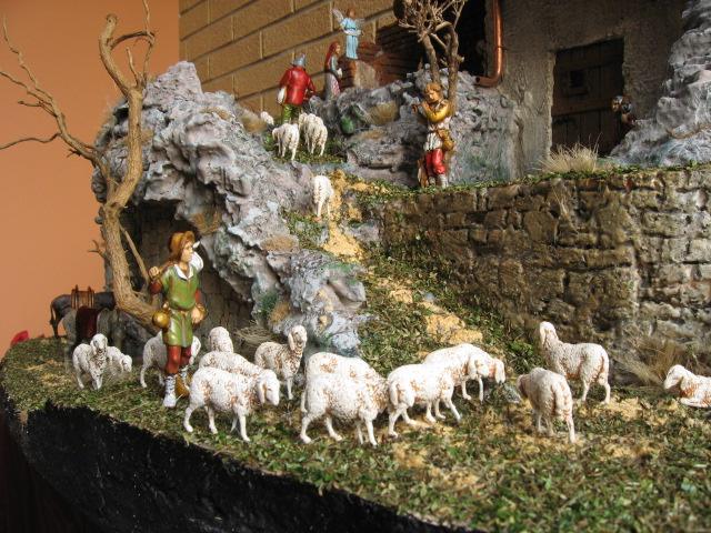 fissare le pecore nel presepe